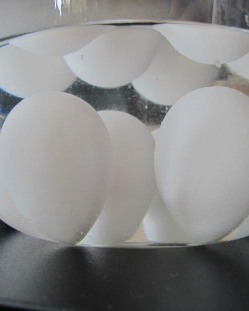 eggies2.jpg